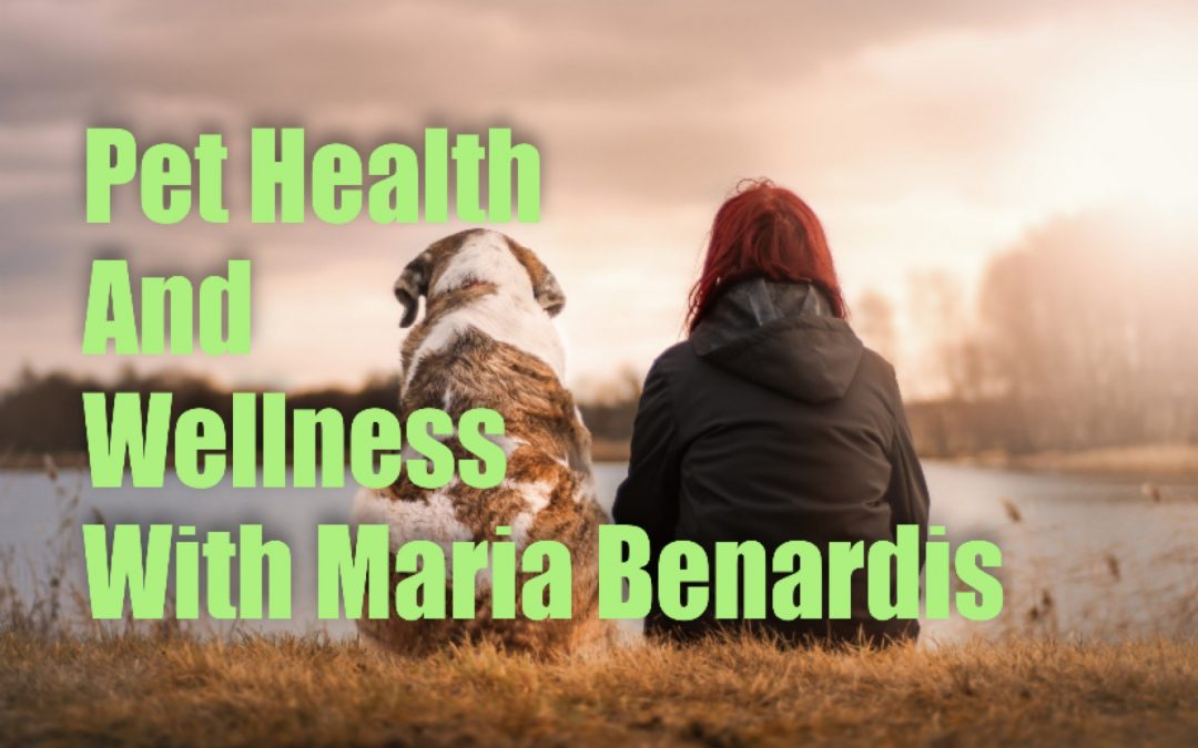 Pet Health & Wellness with Maria Benardis – plus a recipe for easy and healthy dog treats!