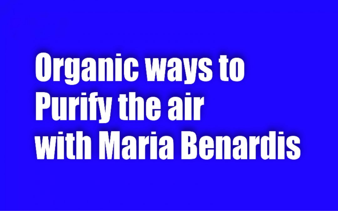 Organic Ways to Purify the Air
